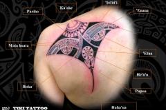 Raie_Manta_tatouage_epaule_dosS