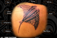 Tatouage_raie_mantaS