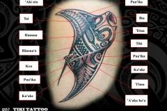 tattoo-raie-manta-maiS