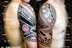 Tatouage_epaule_coiffe_haut-bras_tikitattooS