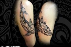 tatouage_requin_epaule_homme_tiki_tattoo